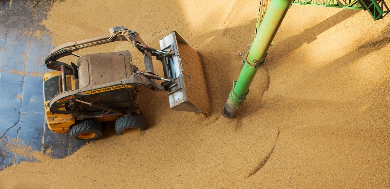 Locação de equipamentos - minicarregadeira